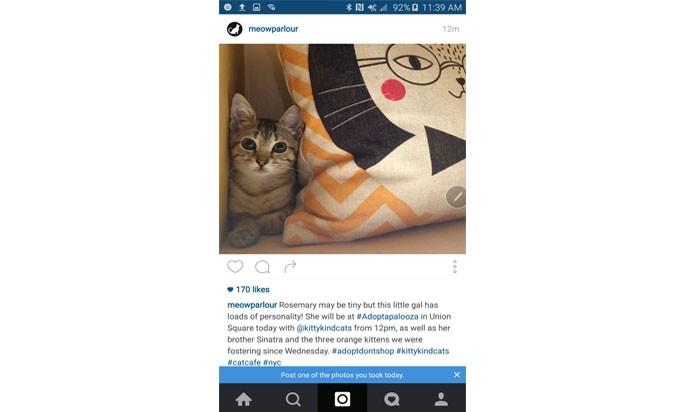 Print mostra sugestão do Instagram para publicar fotos mais recentes (Foto: Reprodução/ The Next web)