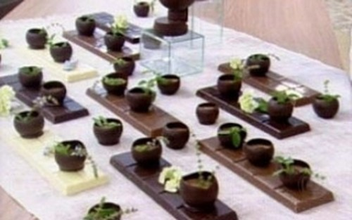 Mousse de Chocolate Com Manjericão e Limão