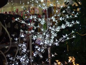 O pisca-pisca é um dos símbolos do Natal e representa as fadas da crença pagã (Foto: Jackson Félix/G1 RR)