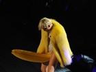 Miley Cyrus sensualiza com banana e cachorro-quente gigantes em show