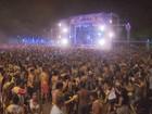 Bloco do Urso e Vermes e Cia vão agitar carnaval no Sul de Minas