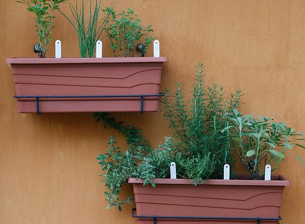 Jardineiras são ótimas para driblar a falta de espaço em apartamentos ou áreas pequenas. Da esquerda para a direita: manjericão, cebolinha, orégano, tomilho, alecrim e sálvia (Foto: Evelyn Müller/Casa e Jardim)