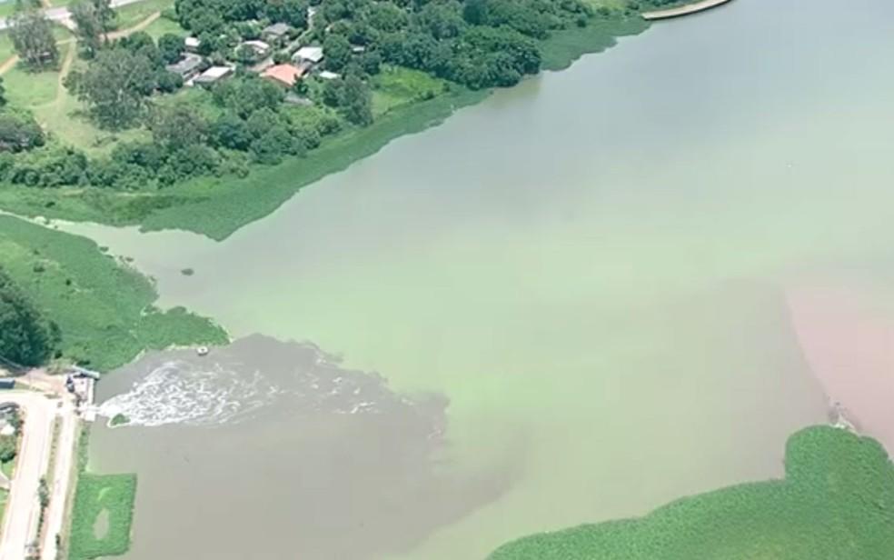 Mancha verde de cianobactérias no Lago Paranoá, em Brasília (Foto: TV Globo/Reprodução)