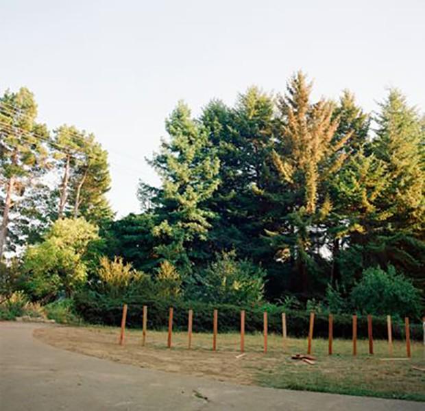 The world of Woodshock (Foto: PHOTO COURTESY OF A24)