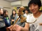Japoneses fazem festas para provar lagarto e outros pratos exóticos