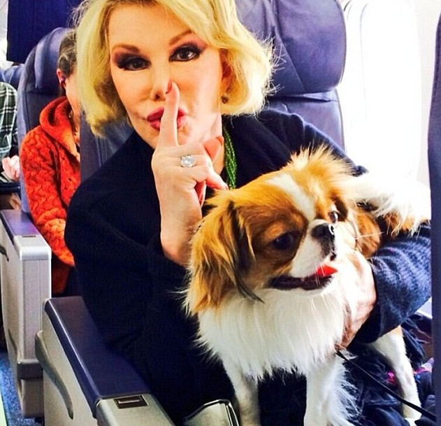 Joan Rivers deixa herança de US$ 150 milhões para filha, neto e cachorros