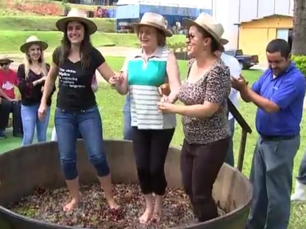Grupo participou da pisa da uva pela primeira vez em São Roque (Foto: Reprodução/TV TEM)