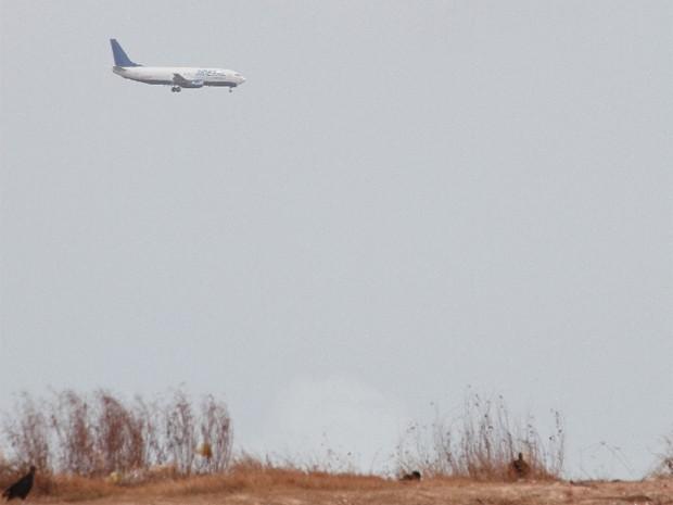 32 incidentes envolvendo aves e aeronaves foram registrados este ano (Foto: Fabrício Cunha / O Estado)