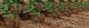 Aumento de chuvas intensifica semeadura de soja em MT (Reprodução/TVCA)