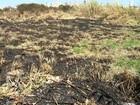 Focos de incêndio preocupam moradores na região de Jundiaí
