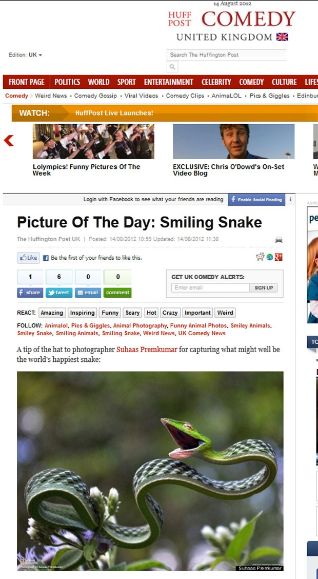 Fotógrafo Suhaas Premkumar capturou a imagem de uma cobra que parece estar sorrindo. (Foto: Reprodução)