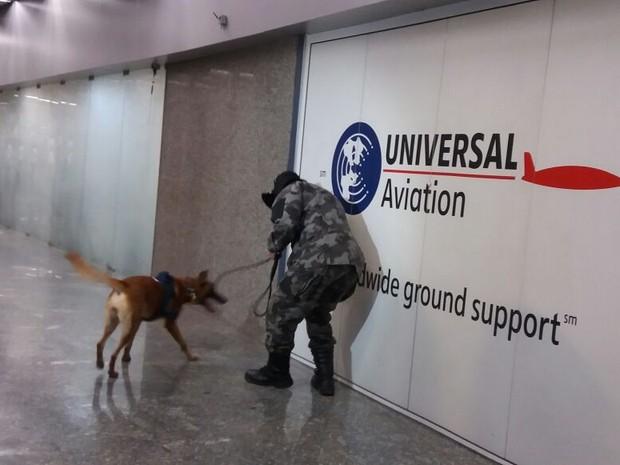 Policiais participam de treinamento com cães farejadores no Galeão (Foto: Janaína Carvalho / G1)