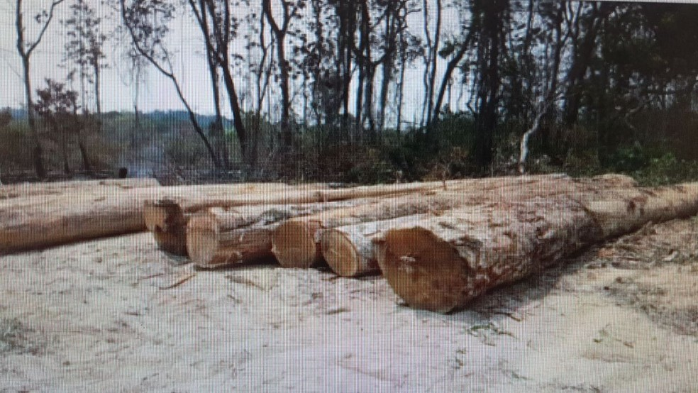 Operação ocorre em aldeias da Terra Indígena Nambikwara, onde desmate ilegal estaria ocorrendo (Foto: Polícia Federal/Divulgação)