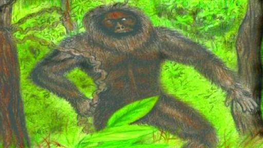 Criatura mítica povoa o imaginário dos povos do Himalaia, como no desenho acima (Foto: BBC)
