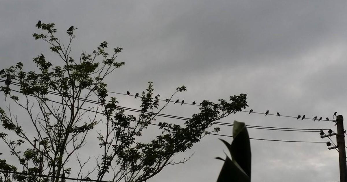 Tempo continua instável em todo o estado de Rondônia nesta ... - Globo.com