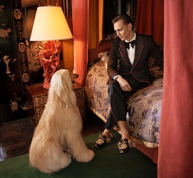 Tom Hiddleston (Foto: Divulgação)