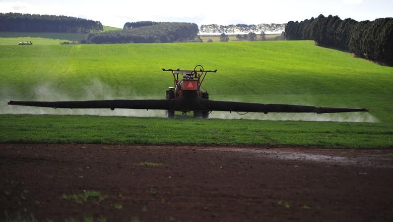 agricultura_defensivo_ (Foto: Ernesto de Souza/Ed. Globo)