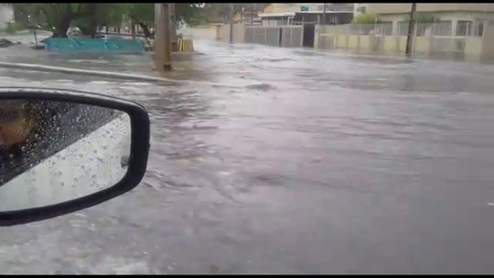 Dia de chuva tem árvore caída e trânsito complicado no Grande Recife
