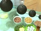 Gases são causados por fermentação de bactérias do intestino na digestão