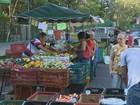 Investir em alimentação saudável é alternativa e vantagem para negócios