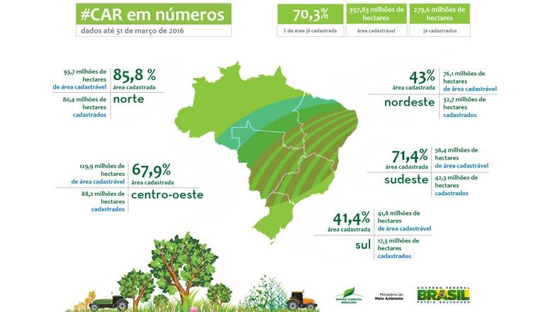 Mapa do CAR no Brasil (Foto: Serviço Florestal Brasileiro/Divulgação)