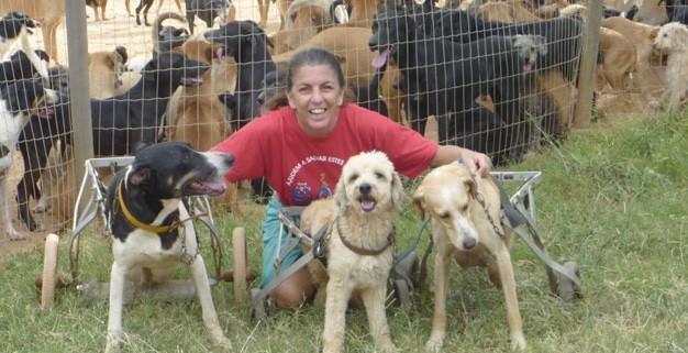 Isabel exibe os cachorros com deficiência física, porém saudáveis (Foto: Isabel Ruliere / Arquivo pessoal)