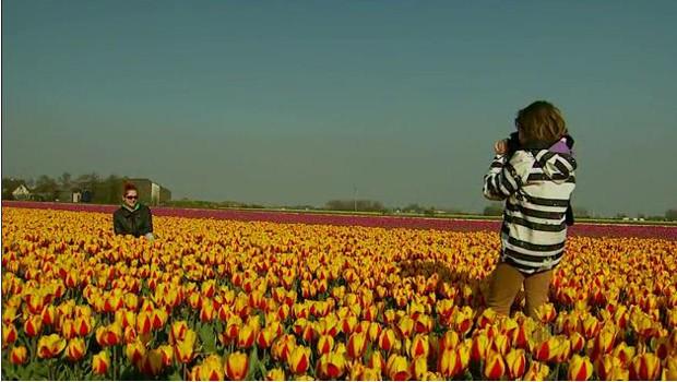 Equipe mostra as maravilhas dos jardins na Holanda (Foto: Reprodução EPTV)