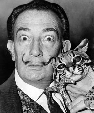 110 anos de nascimento de Dalí (Wikipedia)