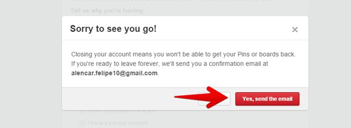 Confirme o envio do e-mail (Foto: Felipe Alencar/TechTudo)