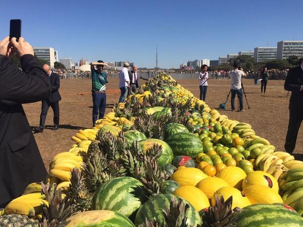 Melancias, abacaxis, melões, bananas e laranjas distribuídos gratuitamente pela Confederação Nacional da Agricultura na Esplanada dos Ministérios, em Brasília, na manhã desta quinta-feira (28) (Foto: Alexandre Bastos/G1)