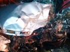 Batida frontal mata dois jovens e  deixa três feridos em Ilhéus, sul da BA