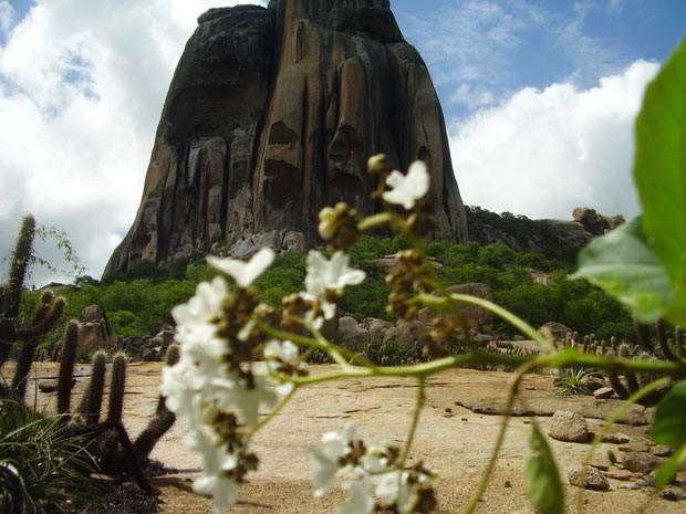 Reserva natural Pedra da Andorinha, localizada na região de Sobral, interior do Ceará (Foto: Robbyson Melo)