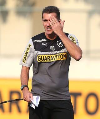 Vagner Mancini, treino Botafogo (Foto: Satiro Sodré / SSPress)