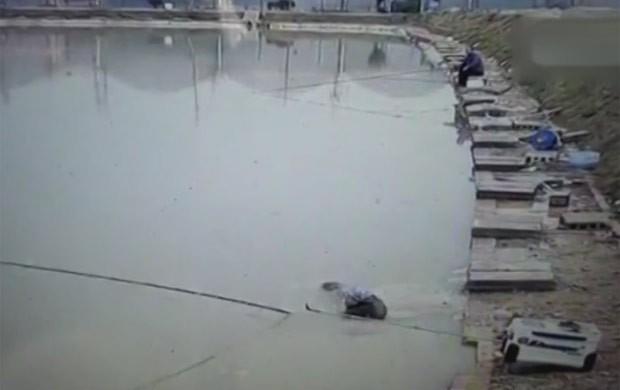'Peixe valentão' arrasta pescador para dentro de lago e consegue fugir (Foto: Reprodução/YouTube/The Quint)
