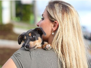 Karina adoped the puppy she named Whiskey after police in Curitiba rescued him from two drunks who fed him alcohol