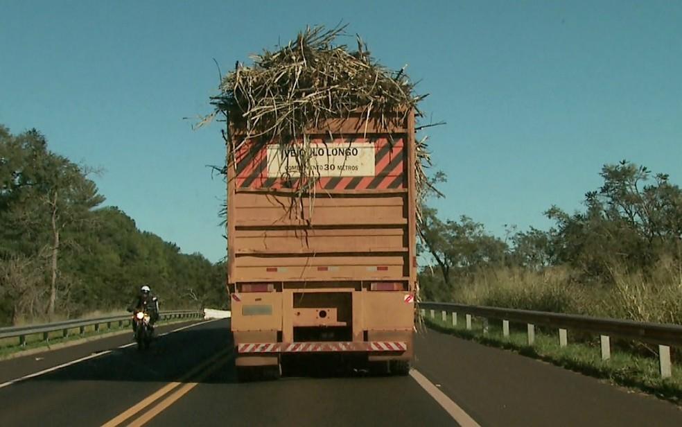 Equipe de reportagem da EPTV flagrou o transporte de cana-de-açúcar de forma irregular (Foto: Reprodução/EPTV)