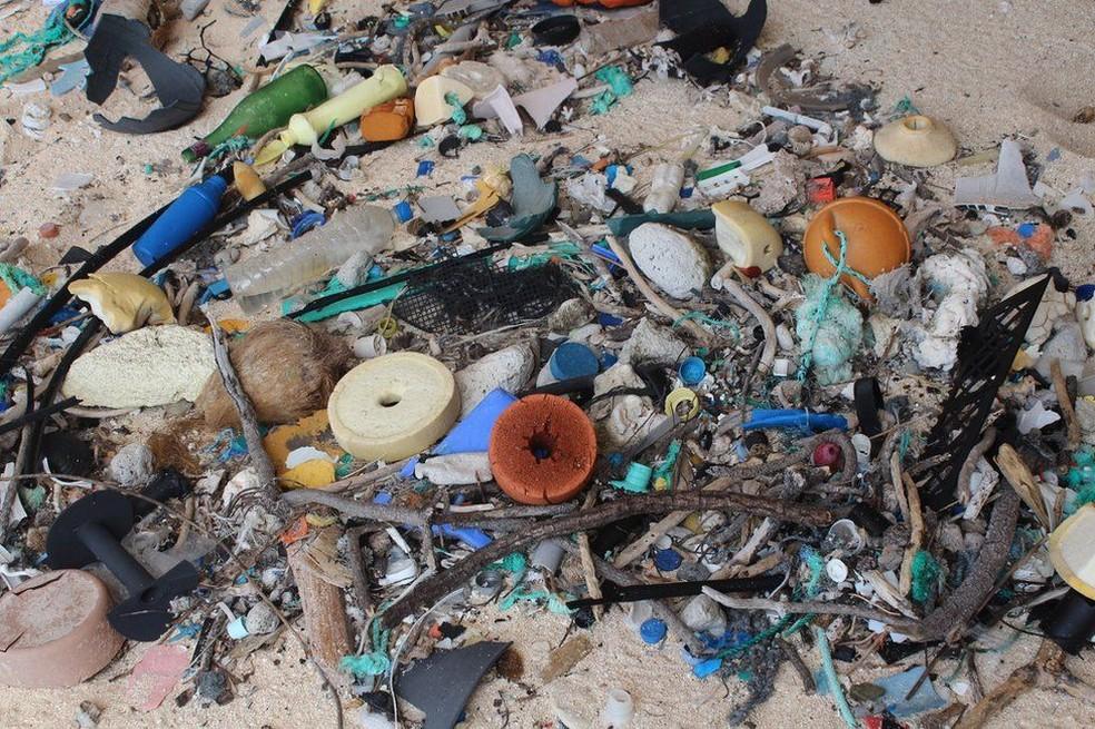 Quantidade de detritos na ilha seria de 37,7 milhões  (Foto: Jennifer Lavers/Universidade da Tasmânia)