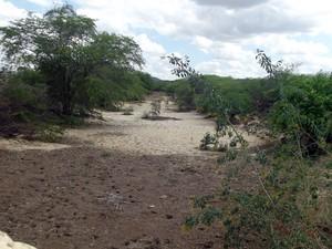 Riachos de Equador, RN, secaram totalmente com a seca (Foto: Anderson Barbosa/G1)