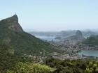 Resende é cidade que mais destrói Mata Atlântica no RJ; capital é a 4º
