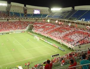 Mosaico torcida América-RN x Fluminense (Foto: Klênyo Galvão)