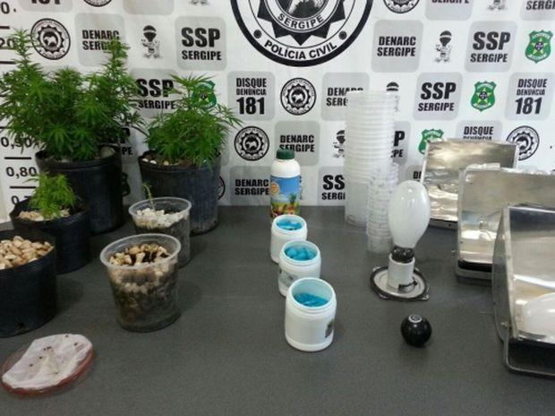 Fertilizantes, refletores e lâmpadas funcionavam como estufa artesanal (Foto: Denarc/Divulgação)