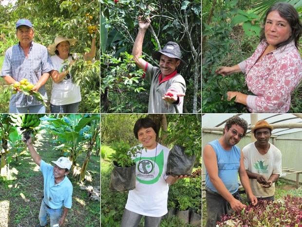 Grupo de produtores orgânicos (Foto: Arpad Spalding/Instituto Kairós/Divulgação e Gabriela Gasparin/G1)