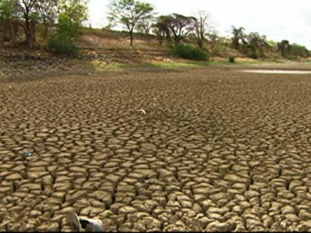 Seca no Nordeste (Foto: TV Globo)