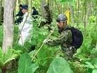 Buscas seguem por menino deixado de castigo em floresta no Japão