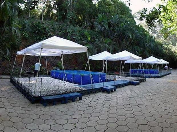 Centro de Reabilitação foi reformado e ampliado (Foto: Divulgação/ Ipram)