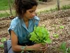 Jovens largam bons empregos na cidade para se tornarem agricultores