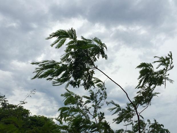 Temperaturas sobem e possibilidade de chuva fica menor no oeste de MS, diz Inmet (Foto: Isabela Cavalcante / G1 MS)