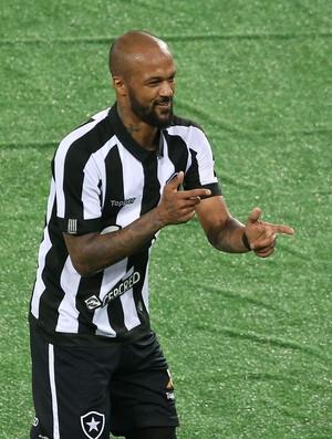 Bruno Silva Botafogo x Ponte Preta (Foto: Satiro Sodré/SSPress/Botafogo)