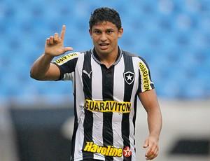 Elkeson gol Botafogo x Atlético-MG (Foto: Wagner Meier / AGIF)