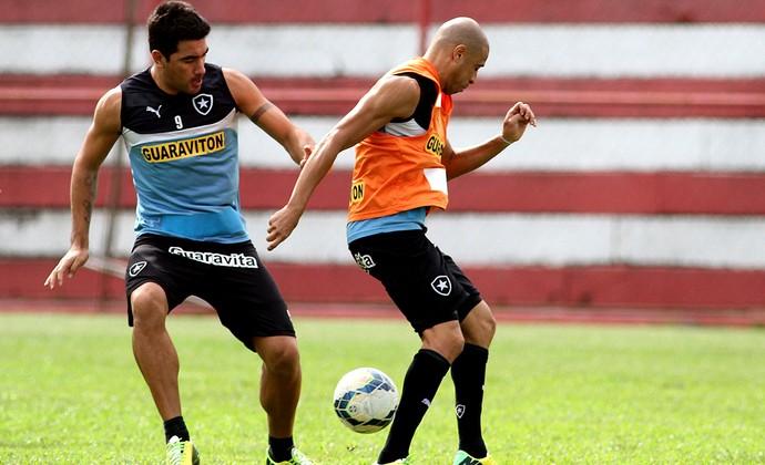 Ferryra treino Botafogo (Foto: Vitor Silva/SSPress)